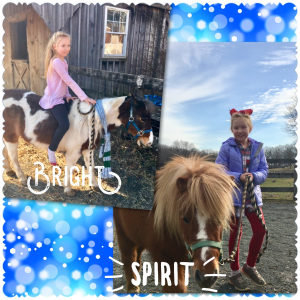 Spirit and Bright Ponies
