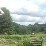 Freedom Valley Farm Garden