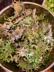 Frying Kale in Lard